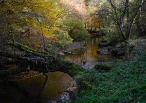 River Vonne 2